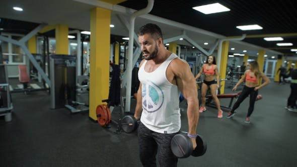 Thumbnail for Muscular Man With Dumbbells
