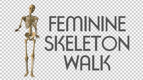 Feminine Skeleton Walk