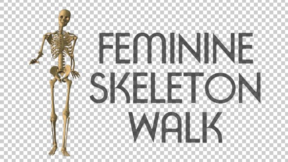 Thumbnail for Feminine Skeleton Walk