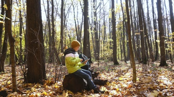 Thumbnail for Child In Autumn Forest Uses Tablet