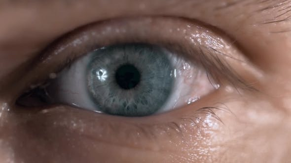 Thumbnail for Beautiful Blue Man Eyes With Conatc Lense