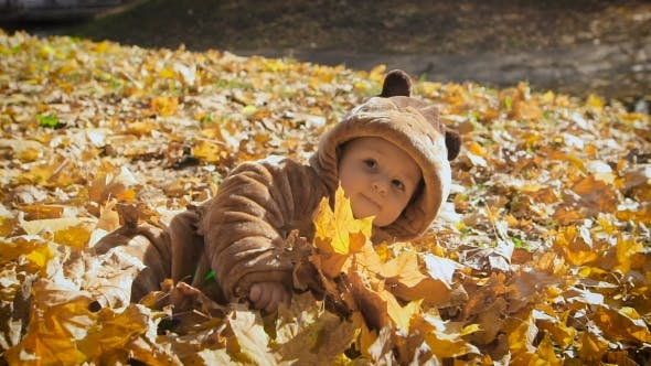 Thumbnail for Happy Playful Child Outdoors. Cute Kid In Bear Costume Lies In Yellow Autumn Leaves. The Little Boy
