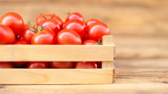 Thumbnail for Tomatoes With a Small Box