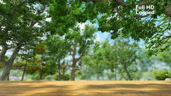Thumbnail for Nature Backdrop V2