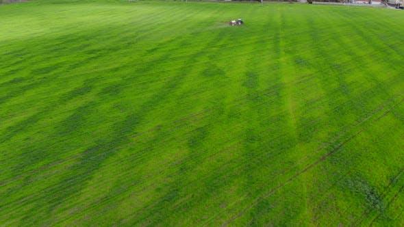 Traktor sprüht Pestizide auf Kornfeld