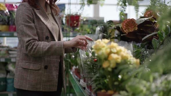 Thumbnail for Female Shopper Gardener Chooses Decorative Blooming House Flowers in Pots on Shelves of Flower Shop