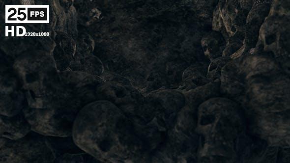 Skull On Rock