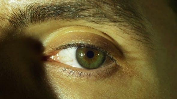 Thumbnail for Human Eye Blinks