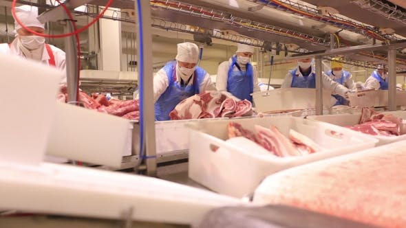 Thumbnail for People Prepare Fresh Meat For Delivery To Stores.