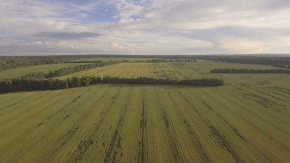 Thumbnail for Aerial View: Flying Over Green Field