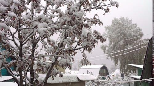 Erster Schnee im Oktober