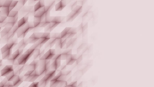 Thumbnail for Abstract Rose Polygonal Motion Background
