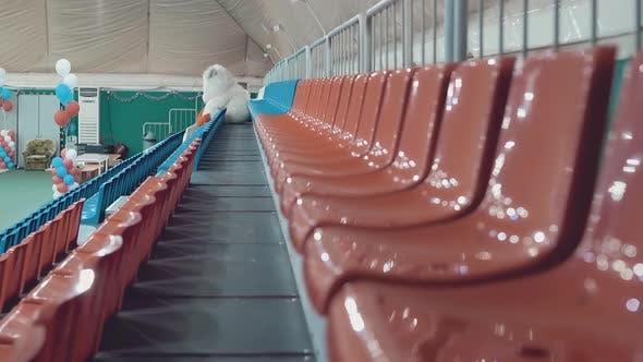 Empty Stands Before the Beauty Contest