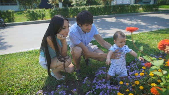 Thumbnail for Family Looking At a Flower Bed With Flowers.