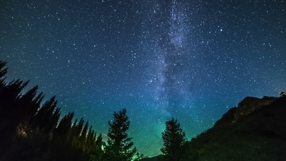 Thumbnail for The Milky Way Rises Over The Pine Trees On a Foreground.