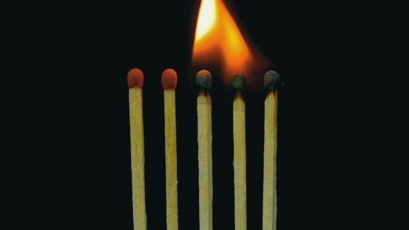 Burning Matches, Chain Reaction And Flame.
