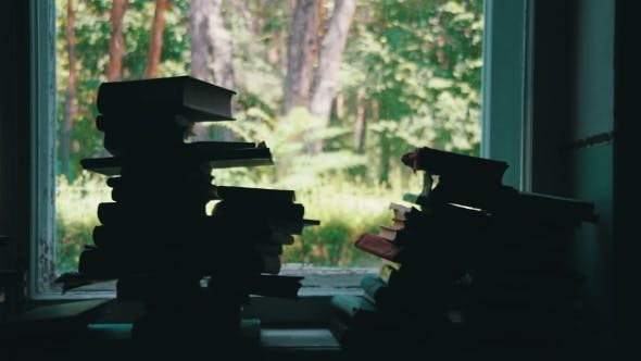 Thumbnail for Stacks Of Books in Library Lying On A Window Sill On The Background Green Forest Outside