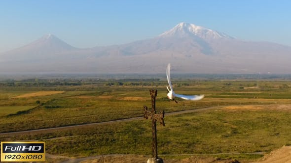 Thumbnail for Pigeon Against the Background of Mount Ararat