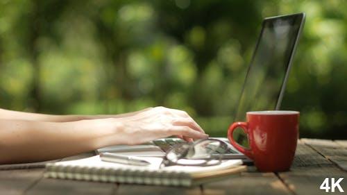 Typing On Laptop At Garden