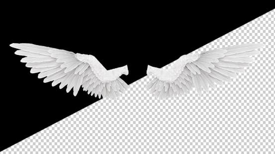 White Angel Wings With An Alpha Channel