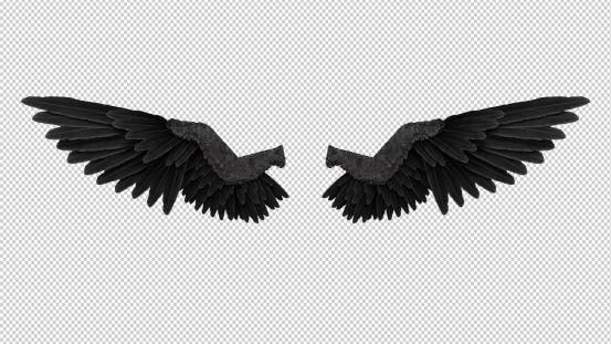 Black Angel Wings With An Alpha Channel