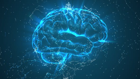 Brain Rotating