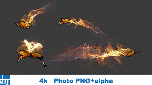 Yellow Butterfly Gorgeous Particle Light Trailing Flying  V2