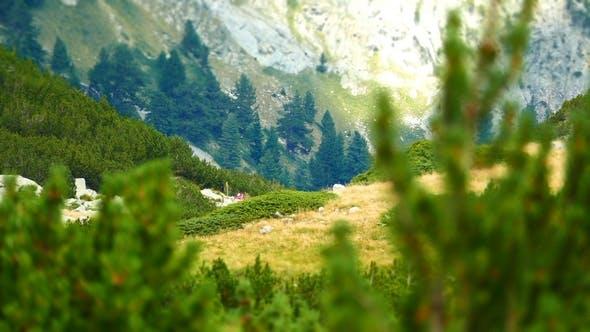 Thumbnail for Bergwandern 3
