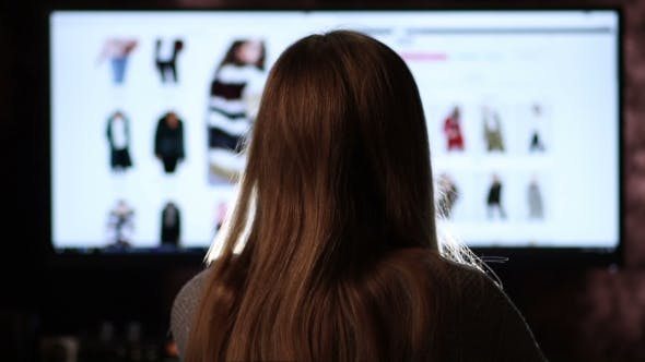 Thumbnail for Back View Of Woman Shopping Online With Computer