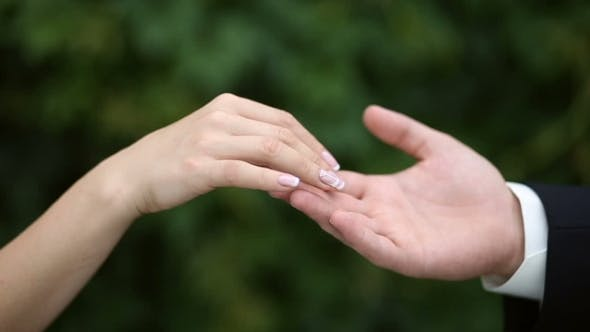 Thumbnail for Woman's Hand Touching Man's Hand