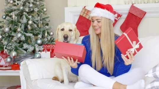 Thumbnail for Beautiful Sexy Girl Sitting At Christmas Time On Sofa