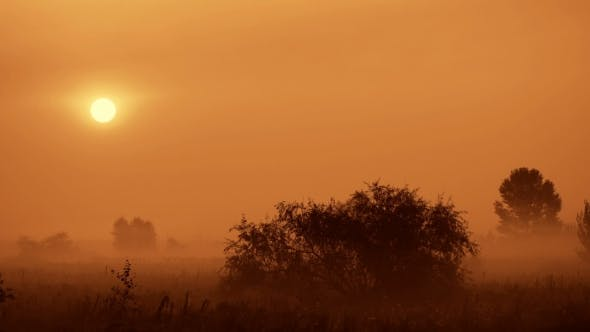 Thumbnail for Morning Fog Haze