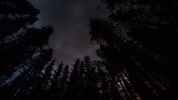 Thumbnail for Of Stars And Clouds Directly Overhead