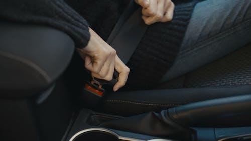 Girl Driver Fastened Seat Belt