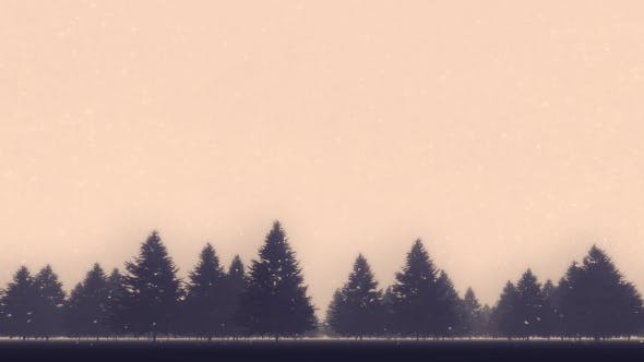Thumbnail for Winter Pine Forest