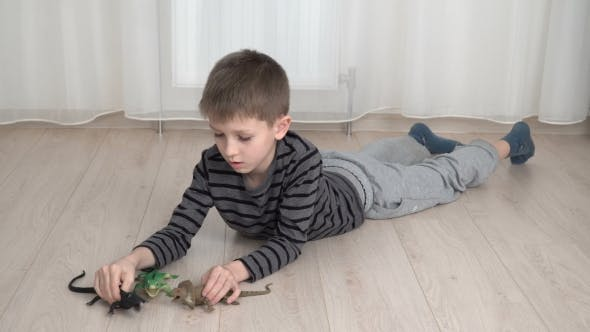 Thumbnail for Little Boy Playing With Dinosaurs on Floor at Home