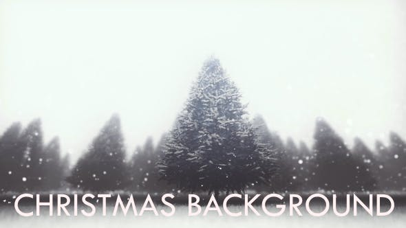 Thumbnail for Snow And Pine Forest - Christmas Background