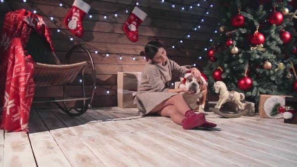 Thumbnail for Happy Woman And Bulldog At Santa Hat At Christmas
