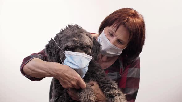 Thumbnail for Mistress Puts a Face Mask on a Dog