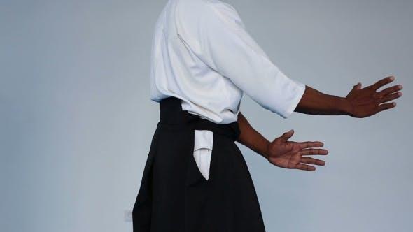 Thumbnail for Martial Arts Master In Black Hakama