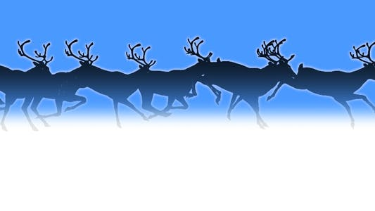 Thumbnail for Reindeer Herd - Black Silhouettes - Passing Screen
