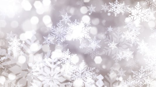 Christmas Snowflakes and Particles