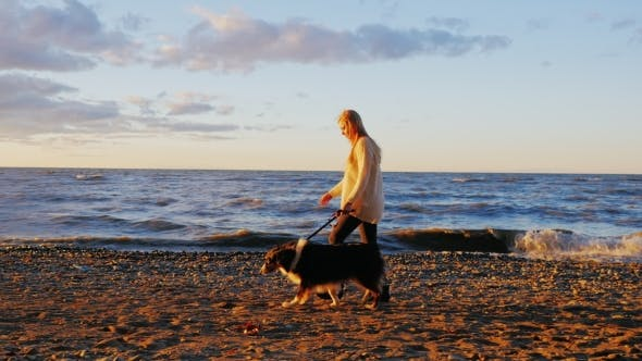 Thumbnail for Young Woman Walking With His Beloved Dog Along The Bank Of The Lake.