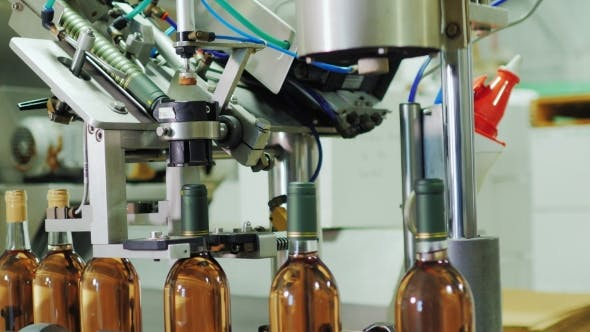 Thumbnail for Conveyor Covers Bottle Of Wine. Bottles Of Wine Are Moving On Conveyor Belt