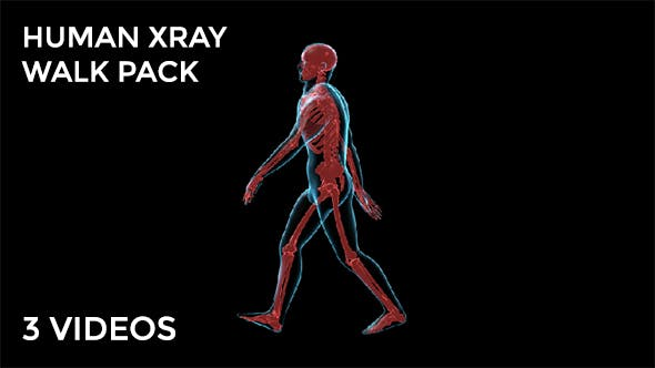 Thumbnail for Human Walk Xray Pack