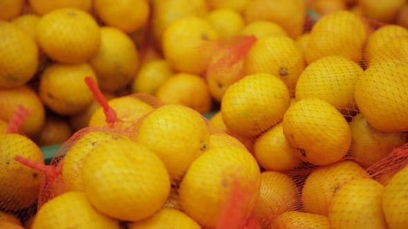 Cover Image for Many Fruits Mandarins And Grapefruits Lying In Boxes In Supermarket