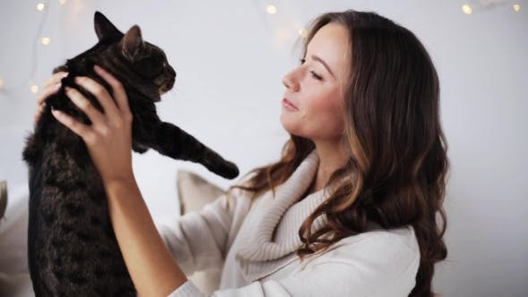 Thumbnail for Young Woman Playing With Cat At Home 7