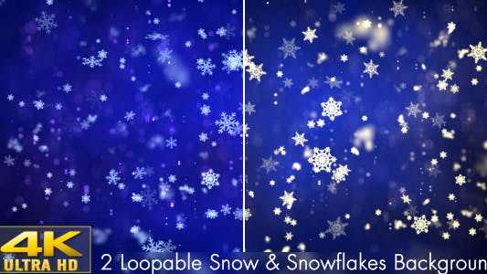 Cover Image for Snow and Snowflakes 1