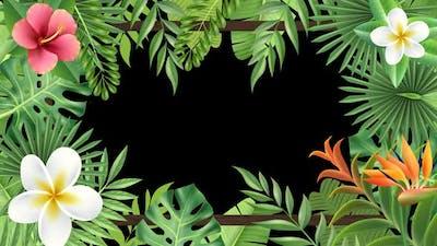 Tropical Plant Frame Hd