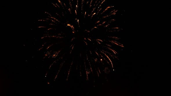 Thumbnail for Colorful Fireworks In Dark Night Sky.